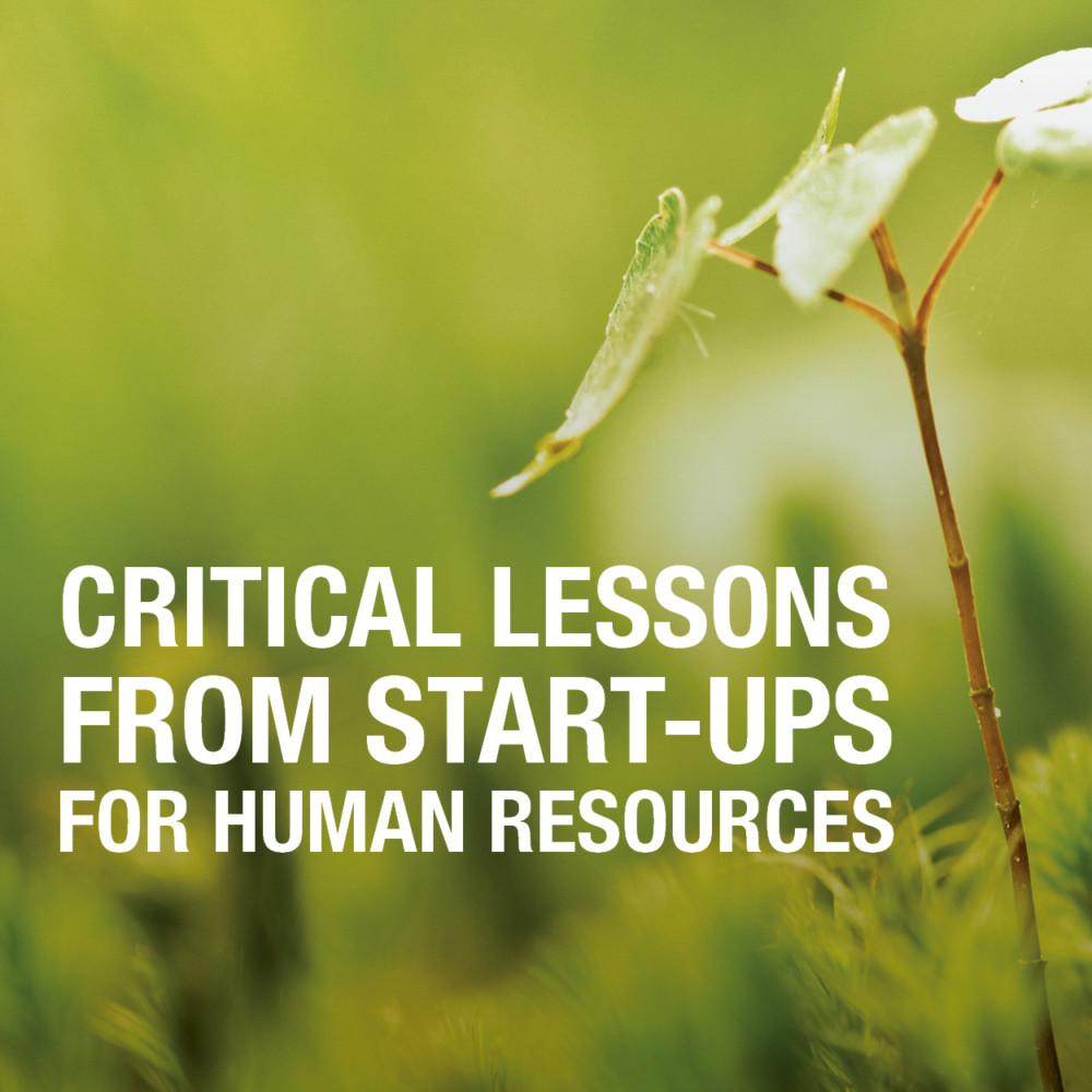 Critical Lessons Start Ups HR